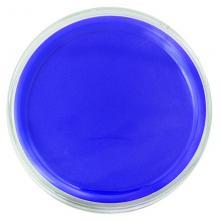 betway必威体育官网9863印台 蓝色快干印台盒 80mm圆形印台 小号速干印泥印油